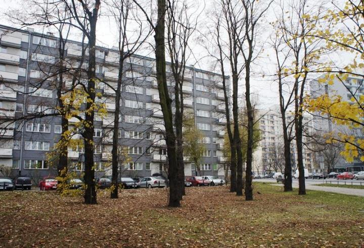 Rekreacja Warszawa