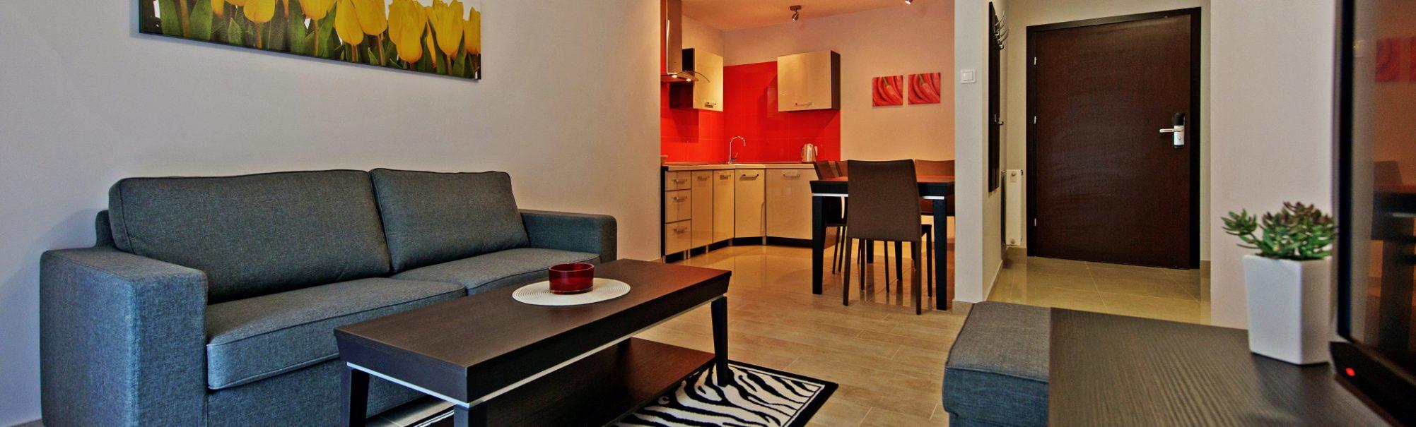 Apartamenty Sun&Snow Apartament UG 117 Szklarska Poręba